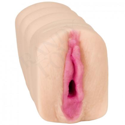 Ashton Moore Pocket Pussy